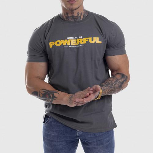 Ultrasoft póló Iron Aesthetics Powerful, szürke